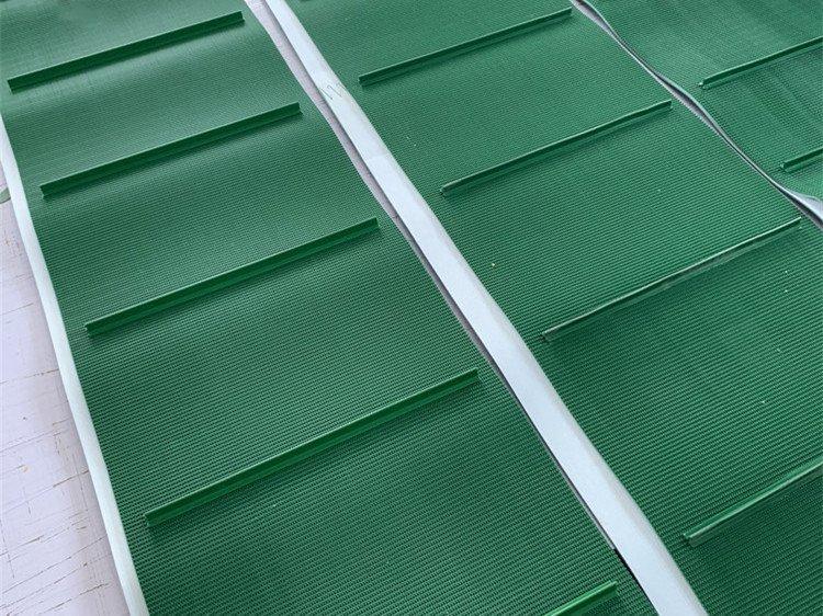 綠色草紋擋板輸送帶圖片