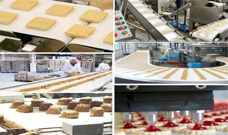 食品pvc輸送帶-輸送帶廠-食品傳送帶